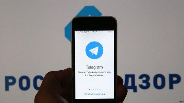 Оглашен срок начала блокировки Telegram